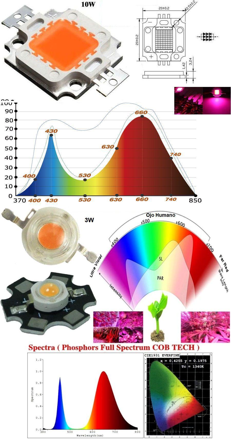 Electro Fácil Iluminación interior cultivo para PTkuOiXZ